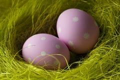 Розовые пасхальные яйца в гнезде Стоковые Фотографии RF
