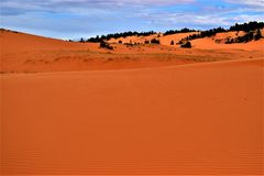 Розовые песчанные дюны парк штата, Юта Стоковая Фотография