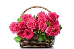 Розовые розы в корзине Стоковая Фотография