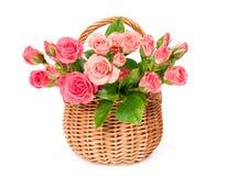 Розовые розы в корзине wicker Стоковое Изображение