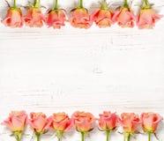 Розовые розы на белой деревянной предпосылке Стоковые Фото