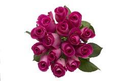 Розовые розы на белой деревянной предпосылке Стоковое Фото