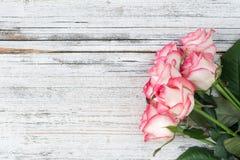Розовые розы на винтажной белой деревянной предпосылке Стоковые Фотографии RF