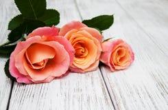 Розовые розы на деревянной предпосылке Стоковое Фото