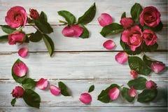 Розовые розы на древесине Стоковая Фотография