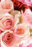 розовые розы Стоковое фото RF