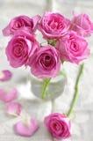 Розовые розы. Стоковое Изображение