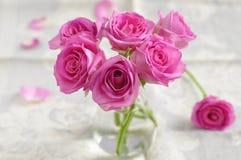 Розовые розы. Стоковая Фотография
