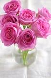 Розовые розы. Стоковые Изображения