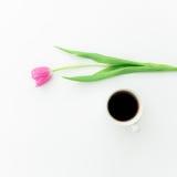 Розовые тюльпаны и черный кофе на белой предпосылке Плоское положение Взгляд сверху Предпосылка дня Валентайн Стоковое Изображение RF