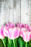 Розовые тюльпаны над затрапезным белым деревянным столом Стоковая Фотография