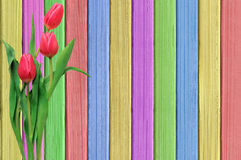 Розовые тюльпаны над затрапезным деревянным столом краски Стоковое Фото