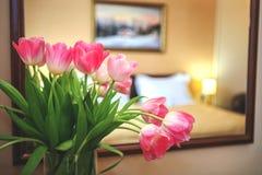 розовые тюльпаны Стоковая Фотография RF