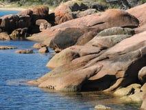 Розовые утесы гранита на заливе медового месяца, Тасмании Стоковая Фотография