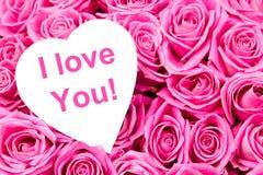 Розовые цветеня стоковое изображение