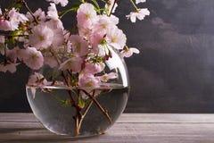 Розовые цветки в вазе на серой деревянной предпосылке Зацветать весеннего времени вектор изображения цветка букета яркий Стоковое фото RF