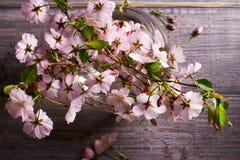 Розовые цветки в вазе на серой деревянной предпосылке Зацветать весеннего времени вектор изображения цветка букета яркий Стоковое Фото