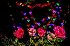 Розовые цветки в предпосылке сердца Стоковое фото RF