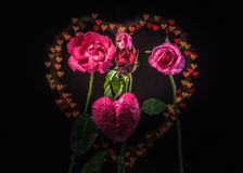 Розовые цветки в предпосылке сердца Стоковые Фотографии RF