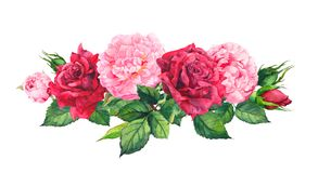 Розовые цветки и красные розы пиона акварель бесплатная иллюстрация