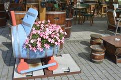 розовые цветки с белизной Стоковое Изображение RF