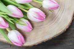 Розовые цветки тюльпана на древесине Стоковая Фотография