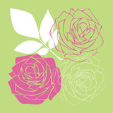 Розовые цветки стоковое фото rf