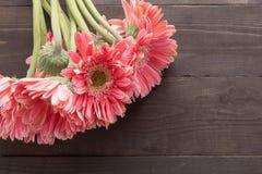 Розовые цветки gerbera на деревянной предпосылке Стоковые Изображения