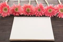 Розовые цветки gerbera на деревянной предпосылке Стоковые Изображения RF