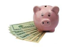 Банк свиньи на долларах изолированных на белой предпосылке Стоковые Фотографии RF