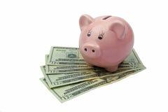 Банк свиньи на долларах изолированных на белой предпосылке Стоковое Фото