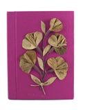 Розовый блокнот бумаги шелковицы Стоковые Изображения RF