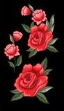 Розовый вектор вышивки для дизайна ткани Стоковые Фотографии RF