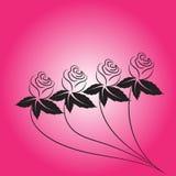 Розовый вектор цветка Стоковые Фотографии RF
