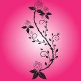 Розовый вектор цветка Стоковое Изображение RF