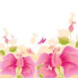 Розовый вектор цветков Стоковое фото RF