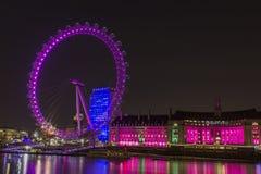 Розовый Вестминстер Стоковые Изображения RF