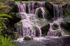 розовый водопад Стоковые Фотографии RF