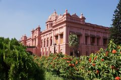 Розовый дворец стоковые изображения rf