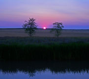 розовый восход солнца Стоковая Фотография