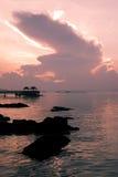 розовый восход солнца Стоковое Изображение