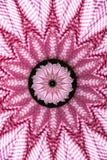 Розовый гобелен калейдоскопа холстинки Стоковые Изображения RF