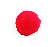 розовый лепесток стоковая фотография rf