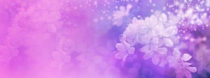 Розовый заголовок вебсайта цветения свадьбы Стоковые Изображения RF