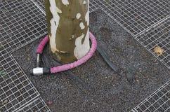 Розовый замок Стоковая Фотография