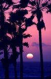 розовый заход солнца неба Стоковая Фотография RF