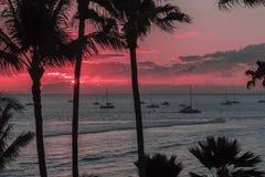 Розовый заход солнца Мауи Стоковое Фото