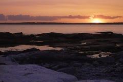 Розовый заход солнца океана Стоковое Изображение