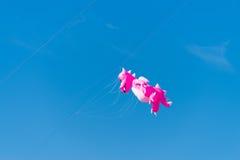 Розовый змей дракона Стоковое фото RF