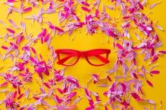 Розовый и фиолетовый лепесток цветка и красные eyeglasses Стоковые Изображения